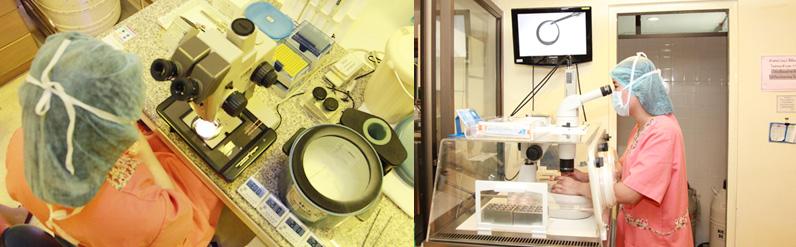 泰国Jetanin试管婴儿医院